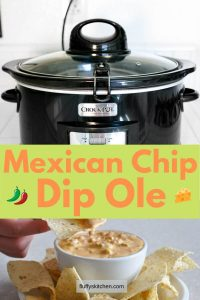 Mexican Chip Dip Ole
